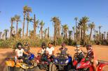 Marrakech Palmeraie Half-Day Quad Bike Experience