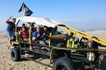 Ballestas Islands, Paracas Reserve, and Huacachina in One Day from Lima
