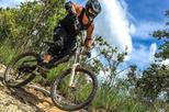1-Day Advanced Downhill Single Track Doi Suthep National Park in Chiang Mai