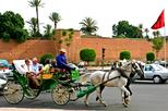 Horse carriage ride in Marrakech