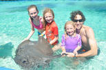 Private Glass Bottom Boat and Stingray Bay Encounter from Punta Cana