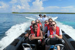 Nassau Harbour Speedboat Cruise