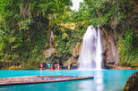 Full-Day Moalboal Islands and Kawasan Falls Small-Group Tour from Cebu