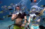 Underwater sea walking in nusa dua in kuta 324498