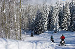 Callaghan Valley Winter Snowmobile Tour
