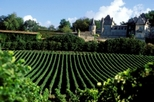 Bordeaux Shore Excursion: Full-Day Small-Group Medoc Wine Tour, Bordeaux, Ports of Call Tours