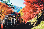 Sagano Autumn Foliage Train Ride Plus Highlights