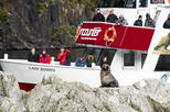 Milford Sound Fly Encounter Cruise and Fly Experience