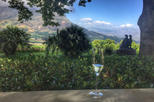 Private Full-Day Winelands Tour from Cape Town