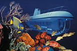 Atlantis Submarine Expedition Tour, Barbados, Submarine Tours