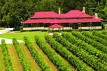 2-Day O'Reilly's Lamington National Park Tour, Brisbane, Overnight Tours