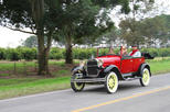 Private Tour: Tucuman Mountains by Vintage Car
