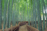 Arashiyama and Sagano Morning Walking Tour, Kyoto, Day Trips