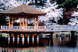 Kyoto and Nara Day Tour including Golden Pavilion and Todaiji Temple from Osaka, Osaka, Day Trips