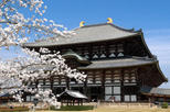 Kyoto and Nara Day Trip from Kyoto including Nijo Castle, Kyoto,