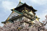 Osaka Full-Day Walking Tour with Osaka River Cruise
