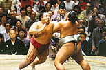 Tokyo Sumo Wrestling Tournament, Tokyo, Cultural Tours