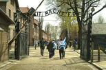 Auschwitz-Birkenau Memorial and Museum from Kraków: Afternoon Tour