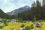 Zakopane and Tatras Mountains Day Tour from Krakow, Krakow,