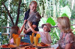 Cairns Tropical Zoo Morning Tour including Breakfast, Cairns & the Tropical North, Nature & ...