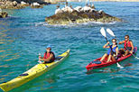 3 Bay Kayak Adventure from Los Cabos