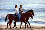 Los Cabos Horseback Riding, Los Cabos, Nature & Wildlife