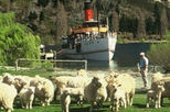 Walter Peak High Country Farm Tour and Cruise from Queenstown, Queenstown, Day Trips