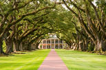 New Orleans Shore Excursion: Post-Cruise Westbank Plantation Tour, New Orleans,