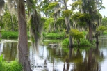 Small-Group Airboat Ride and Plantation Tour from New Orleans, New Orleans, Day Cruises