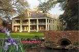 Small-Group Louisiana Plantations Tour from New Orleans, New Orleans,
