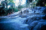 Dunns River Falls and Ocho Rios Shopping Tour, Montego Bay, Day Trips