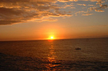 Negril Sightseeing Tour with Sunset at Rick's Cafe