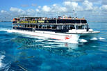 Isla Mujeres Day Tour with Beach Club and Buffet Lunch from Cancun