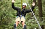 Rainforest Canopy Adventure from Vieux Fort or North Island, St Lucia