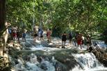 Irie Adventure - Martha Brae Rafting and Dunn's River Falls from Grand Palladium