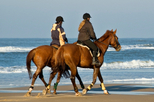 Montego Bay Shore Excursion: Dunn's River Falls and Beach Horseback Riding Tour, Montego Bay, Ports ...