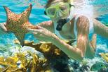 Full-Day Glass-Bottom Boat Tour on Nha Trang Bay