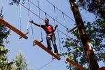 Maple Ridge Aerial Adventure Course