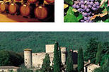 Private Tour: Chianti Region Wine Tasting