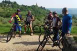 Koper Full-Day Bike Rental