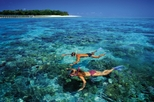 Green Island Half Day Trip from Cairns, Cairns & the Tropical North, Scuba & Snorkelling