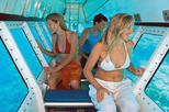 Outer Great Barrier Reef Snorkel Cruise from Palm Cove, Palm Cove, Scuba & Snorkelling