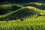 3 Days - Sapa By Day Bus From Hanoi (Deluxe Tour)