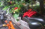 iBike Tour: City Biking and Visiting in Taichung