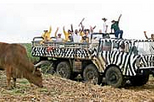 Dominican Republic Mega Truck Safari, Punta Cana, 4WD, ATV & Off-Road Tours