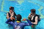 PADI Discover Scuba Diving Course in Bayahibe