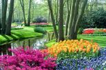 Amsterdam Super Saver 1: Keukenhof Gardens Day Trip and Amsterdam City Tour, Amsterdam, Nature & ...