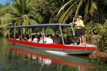 Damas Island Mangrove Boat Tour From Manuel Antonio