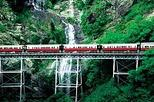 Kuranda Scenic Railway Day Trip from Port Douglas, Port Douglas,