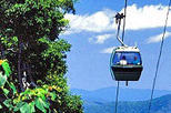 Skyrail Rainforest Cableway Day Trip from Port Douglas, Port Douglas, Rail Tours